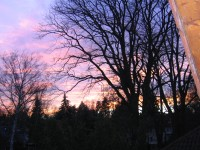 Sonnenuntergang von der Loggia gesehen - Bild 19: XXL Apartment Berlin *Wohnen auf Zeit* WLAN, Hund ok, Langzeitmiete