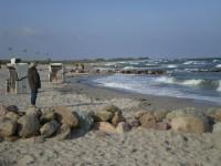 Bild 7: Ferienhaus Strandblick in Schönhagen mit WLan (nur 140 m zum Strand)