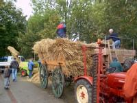 Der Dörpverein Pilsum e.V. richtet jedes das Erntedankfest aus - Bild 10: Ferienwohnung in Pilsum an der Nordsee bei Familie Smid