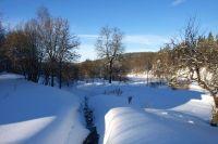 Bild 13: Osterzgebirge, Altenberg - Bauernhaus für 12 Pers. in großartiger Lage