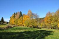 Bild 10: Osterzgebirge, Altenberg - Bauernhaus für 12 Pers. in großartiger Lage