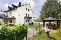 Unser Ferienweingut inmitten der Weinberge - Bild 1: Ferienweingut Scholtes-Hammes