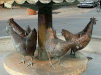 und hier die Hennen dazu - Bild 28: Ferienwohnung Fam. Sauer - mit herrlichem See- und Alpenblick -