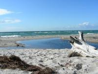 """Der Westsstrand liegt auf der Ostsee Halbinsel Darss im Nationalpark """"Vorpommersche Boddenlandschaft. Der 13 km lange Weststrand bietet besondere Reize für alle, die es urwüchsig mögen. Weg vom Strassenlärm, nur zu Fuss oder mit dem Fahrrad durch den schönen Darsser Wald zu erreichen (ca. 4 km). Hier finden Sie eine unberührte Natur zu allen Jahreszeiten vor. Nach Stürmen kann man mit gutem Auge Bernsteine finden und lange Strandwanderungen unternehmen. Im Sommer herrscht ein frohes Badeleben. - Bild 16: Ostseeurlaub mit Hund - Wassergrundstück - Angeln"""