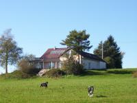 Bild 1: Landhaus Bodensee in Panormasichtlage Hunde willkommen, Wohnung 1