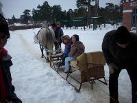 """wenn es denn endlich schneien würde.... könnten wir auch wieder eine Kutschfahrt machen!!! - Bild 13: Ferienwohnung OG *** / Pension """"Villa Erika"""" im Seebad Lubmin * Ostsee"""