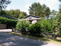Sommer 2014. Die Veranda liegt hinter der Bepflanzung versteckt, trotzdem Sie Aussicht auf den Wald haben. - Bild 16: Eifel-Ferienhaus Fliegenpilz - für Ihren Urlaub mit und ohne Hund
