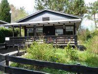 Das Ferienhaus mit Blick auf den Eingang und die Veranda mit gemütlicher Sitzecke. - Bild 1: Eifel-Ferienhaus Fliegenpilz - für Ihren Urlaub mit und ohne Hund