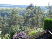 Dieses Foto spricht für sich selbst und benötigt keine weitere Erklärung. - Bild 19: Eifel-Ferienhaus Fliegenpilz - für Ihren Urlaub mit und ohne Hund