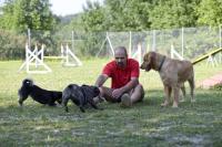 Bild 4: Urlaub mit Hund in Niederbayern World of Animals 4 Pfoten Resort
