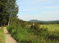 Wanderweg rund um den Liebenstein in Crttendorf, dahinter der Bärenstein - Bild 7: Ferienhaus Familie Ziller Crottendorf Erzgebirge