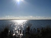 Bild 52: Schicke Fewo an der Nordseeküste-Ostfriesland