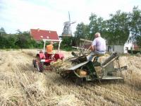 Das Getreide für die Mühle wird historisch korrekt geerntet - Bild 19: Ferienwohnung Mühlenblick in Rysum bei Greetsiel