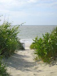 Bild 31: Zeeland Strandhaus - Ihr Ferienhaus direkt an Meer & Strand!