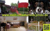 mit Hund - Bild 1: Urlaub an der Mosel mit Hund