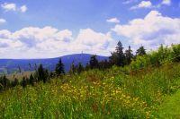 Bild 16: Nichtraucher-Ferienwohnung Ebert&Green im Erzgebirge