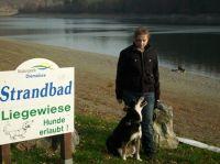 """Auch die Vierbeiner können sich am Hundebadestrand am Diemelsee vergnügen. - Bild 13: Ferienwohnung"""" Am Hemberg""""( Region Diemelsee)"""