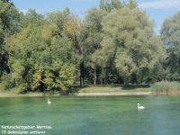 15 Gehminuten entfernt - Bild 4: 40qm Ferienwohnung, Fam. Bill, Radolfzell am Bodensee, bis 3 Personen