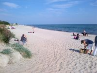 Im benachbarten Grömitz, zu Fuß in ca. 30 Minuten, sind Sie direkt am dortigen Yachthafen. Dort beginnt dann die ca. 3 km lange quirlige Promenade. Dort finden Sie auch einen tollen Hundestrand (Bild) mit Gastronomie und auch eine Hälfte mit Strandkörben. - Bild 13: Top-Haus, Ostsee, Lübecker Bucht, Meerblick Hunde