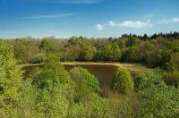 Natur pur am Winsborn Kratersee. Daran angeschlossen finden Sie den Vulkanerlebnispark Mosenberg, welcher viele Informationen über die Entstehung der Vulkaneifel wieder gibt. - Bild 19: Eifel-Mosel ***Ferienwohnung Alte Schmiede II