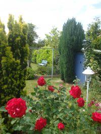 Der schöne Garten - Bild 16: Ferienhaus Ostsee (Wohlenberger Wiek) nähe Boltenhagen