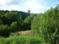 Blick ins Grüne - Bild 19: Ferienwohnung Delattre in der Südeifel