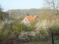 Außenansicht aus der Ferne - Bild 1: Ferienwohnung Delattre in der Südeifel