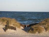 Bild 16: Ostseeurlaub im Ferienappartement Carpe Diem