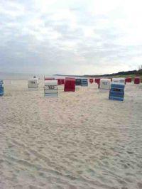 Bild 7: Urlaub mit Hund an der Ostsee