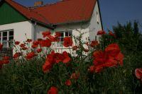 Bild 16: Ferienhaus Beestland am Rande der Mecklenburgischen Schweiz für 6 Personen
