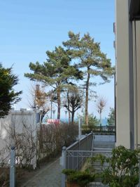 Blick von der Haustür zur Ostsee - Bild 10: Appartement Strandpromenade - direkt am Strand