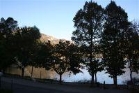 Bild 25: Villa Nini mit eingezäunten Garten am Ledrosee für Urlaub mit dem Hund