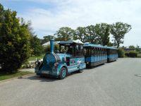 Mit der Bäderbahn kostenlos zum Strand, Haltestelle 80 m entfernt. - Bild 13: Exsklusive Ferienwohnung in Sellin nur 300 m zum Strand und Seebrücke