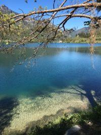 Bild 16: Villa Rosemarie mit traumhaften Blick über Ledrosee für Urlaub mit dem Hund