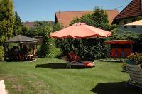 Bild 4: Landhaus Pension Elisabeth in Meersburg - umgeben von Wein und Obstbäumen
