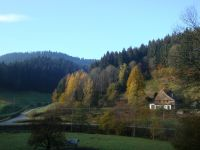 Bild 1: Ferienhaus Warratz in idyllischer Alleinlage zum Alleinbewohnen Schwarzwald