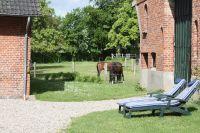 Bild 4: Ferienhaus Gut Ohrfeld - Erholung pur für Gäste mit und ohne Hund