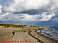 """Bild 28: Ferienhaus """"Ostseetraum""""Urlaub mit Hund an der Ostsee 1,60m hoch eingezäunt"""