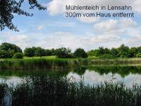 """Bild 25: Ferienhaus """"Ostseetraum""""Urlaub mit Hund an der Ostsee 1,60m hoch eingezäunt"""