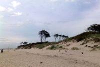 Bild 4: FeWo Spatzenruh für 2 Pers. in Prerow an der Ostsee