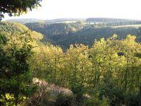 Das herrliche Sammetbachtal am schönen 2-Bäche-Pfad. Hier können Kinder im kleinen Sammetbach auf Entdeckungsreise gehen. - Bild 19: Eifel-Mosel ***Ferienwohnung Alte Schmiede I