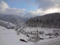 Blick aus dem Fenster - Bild 34: Exclusive Studio- Ferienwohnung im Schwarzwald - Hund incl.