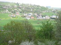 Bild 4: Ferienhaus EifelNatur 1 - großzügige und komfortable 4-Sterne-FeWo