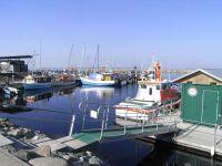 Bild 19: Freistehendes, umzäuntes Reethaus nah am Meer, WLAN-Zugang inkl.