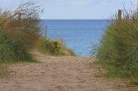 Bild 16: Freistehendes, umzäuntes Reethaus nah am Meer, WLAN-Zugang inkl.