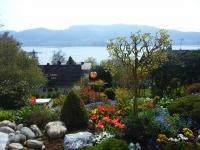 Bild 4: Traumhafte Bodensee Ferienwohnung - Wilhelmina Hangarter