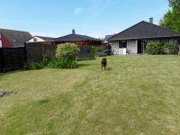 Bild 4: Ferienhaus Windrose Fehmarn OT Puttgarden