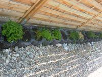 Dieser darf sehr gerne genutzt werden - Bild 25: Ferienhaus Windrose Fehmarn OT Puttgarden