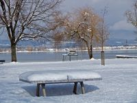 Bild 13: Schöne Ferienwohnung am Bodensee