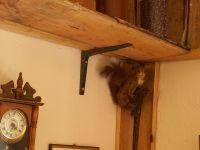Bild 10: Die Zwergen-Mühlenkammer,urig, klein und fein so soll es sein- kommt rein !